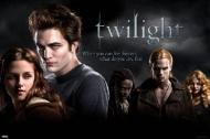 Twilight I Group