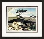 White Pine - Numbered By Artist A. J. Casson