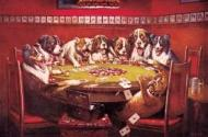8 Drunken Dogs Playing Cards