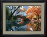 Gapstow Bridge Fall Michael Chen