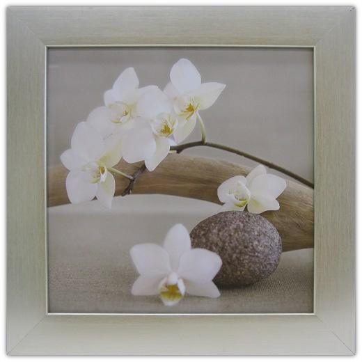 White Orchid | Bathroom | Framed Art | Wall Decor | Art ...
